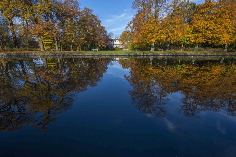 De Vliet in de herfst  © Ronald Meekel